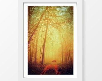 "A fairy tale / Deer forest autumn path tree orange photo printable wall art home decor downloadable art to print yourself / A3 and 11"" x 17"""