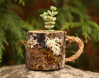 Mug Succulent Pot  Gifts for Her Gifts for Friend Gifts for coworker Gifts for Best Friend