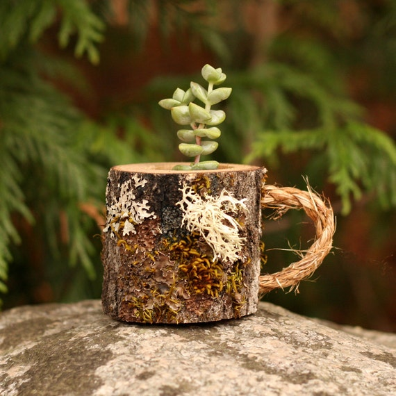 Coworker Gift Mug Succulent Holder Birthday Gifts For Her