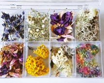 SALE Preserved flower, Dried moss, Dried flower for jewelry, a big box set of flower and moss, real flower and moss, Dried rose