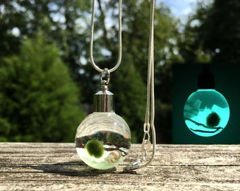 Glow In The Dark Marimo Moss Ball Necklace  / Wearable Marimo Necklace / Live Marimo Moss Necklace / Plant Fashion Accessories