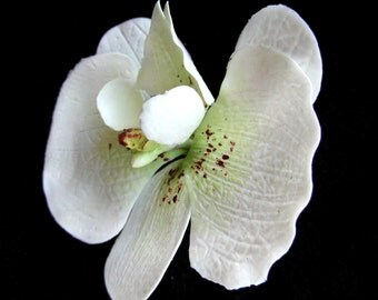 White Orchid hair clip realistic drop