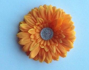 Small Orange Daisy with Sugar Dot