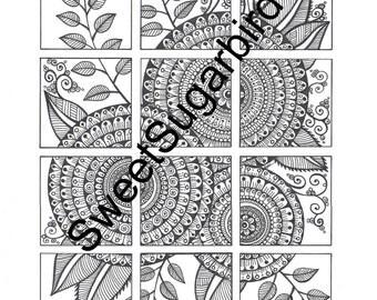 Floral Segments #3