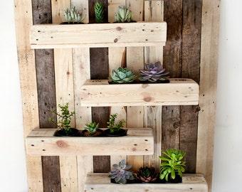 Wall Planter Display
