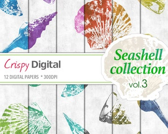 Seashell Digital Paper, Sea Shell Collection Vol. 3, Seashell printables 12pcs 300dpi Digital Download Scrapbooking Printable Paper