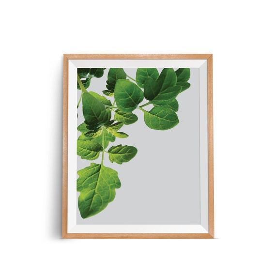 Tropical Leaves Wall Decor : Green leaf wall print tropical modern art plant by