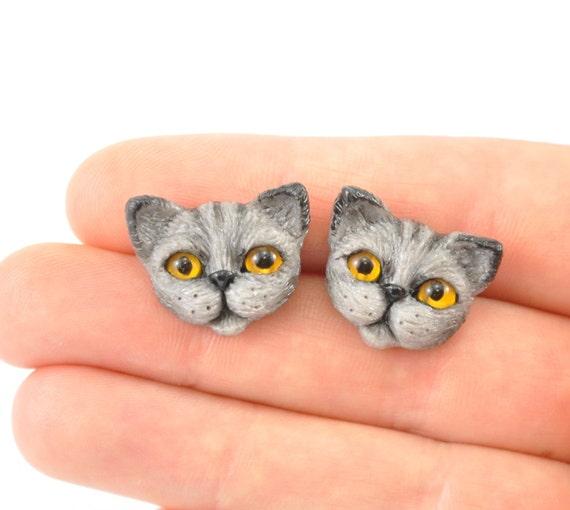 cat pet shop london