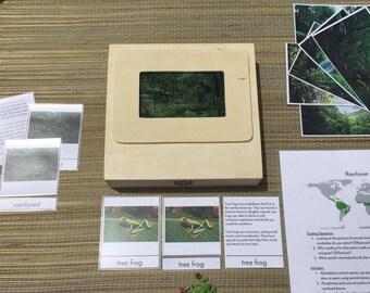 Montessori Biome Box Rainforest - Objects & Three/Four Part Cards