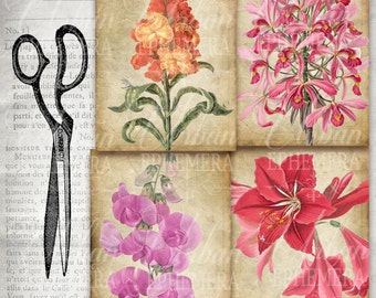 Vintage flower cards, digital paper letter size - instant download for Scrapbooking Journaling Decoupage