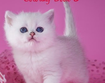 Cute Kittens and Cats Coloring Book 3