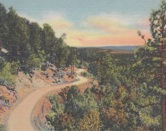 New Mexico Vintage Postcard - Scenic Mountain Drive Vista of Grand Beauty and Grandeur