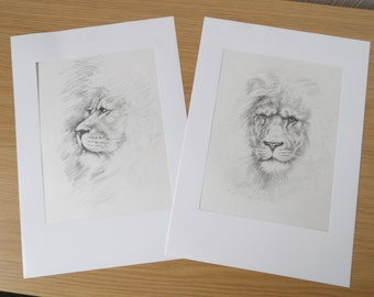 Set of two sketches of Lions. Pencil on paper. 1998.