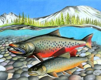 Arctic Char, Char, Char Print, Trout, Flyfishing, Ice Age, Fish Print