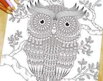 Big eyes owl - Adult Coloring Page Print
