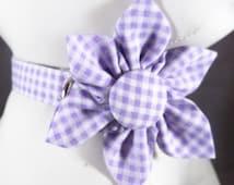 Purple Cat Collar, Purple Gingham Cat Collar, Break away Collar, bell & collar flower or Bow tie included, Kitten collar, gingham collar