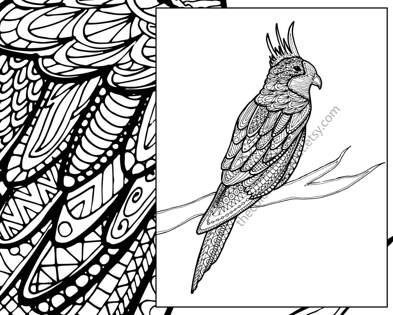 zentangle bird coloring sheet animal coloring zentangle. Black Bedroom Furniture Sets. Home Design Ideas