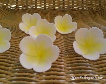 12 Plumeria Frangipani Edible Gumpaste Flowers