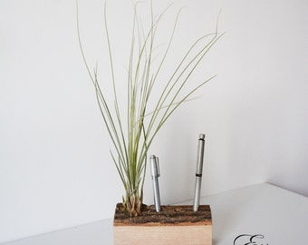 AirPlant pen-station - by Etienne bois