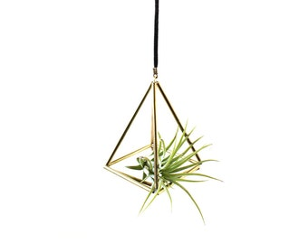 Small Brass Mobile with Air Plant (4 sided short)