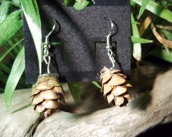 Real Hemlock Cone Earrings