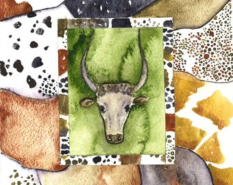 Nguni Cattle Patches