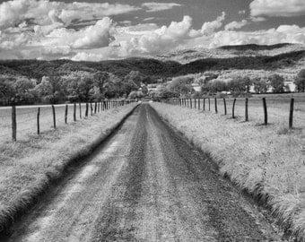 The Road Less Traveled_Black and White framed print
