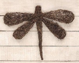 Dragonfly-Angel Vine-Great for Spring