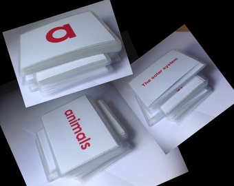 Spanish flashcards. Body parts  learning Spanish flash cards. flash cards.  aphabet body flashcards. General knowledge.