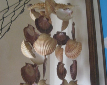 Shell Windchimes