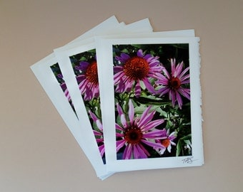 Photo Note Card #10