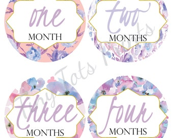 New!! Baby Girl Monthly Stickers, Milestone Stickers, 12 Month Stickers, Baby Stickers, Monthly Stickers Girl, Floral