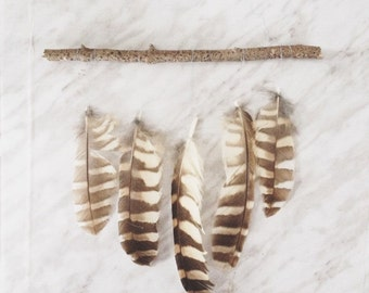 Gorgeous cruelty free feather wall hanging to give life to your home. Made from feathers and driftwood