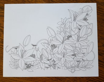 Black and White Lily Illustration