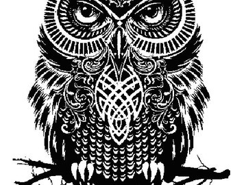 Insomniac Owl Decal/ Sticker
