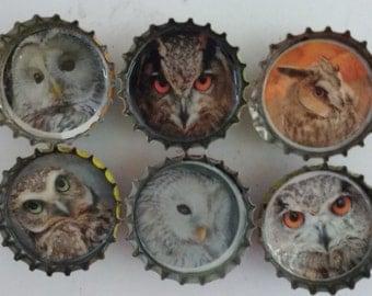 Owl Bottle Cap Magnets