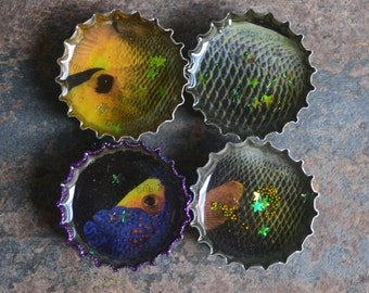 Fish Magnets, Super Strong Fridge Magnets, One of a Kind, Rare Earth Magnets,