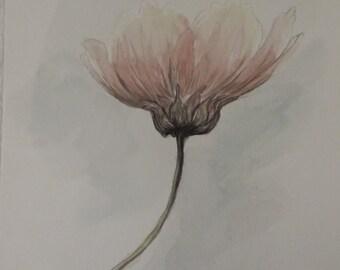 Subtle Bloom