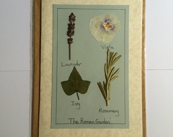 Handmade Pressed Flower Card 'The Roman Garden' Design
