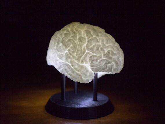 3D Printed LED-Lit Brain Lamp