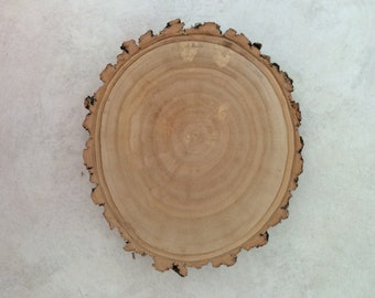 4-5 inch  Willow Wood Slice