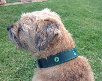 Green leather dog collar. Robo Dog!