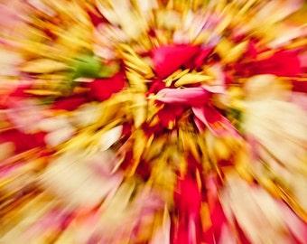 Beautiful zoom flowers
