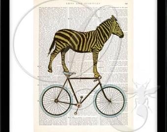 Zebra Art Print, Bike Print, Dictionary Art Print, nursery wall art, kids room decor, bicycle art, zoo animal art, bicycle art print no. 16