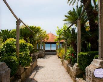 Pathway to the coast in the Trsteno Arboretum