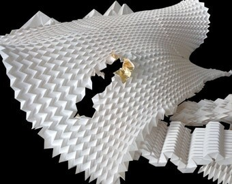 folding experiment