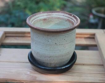 Yellow Pottery Planter and Black Dish Set