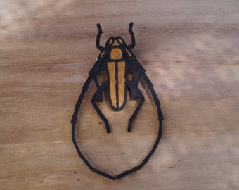 Long-horned beetle to pin