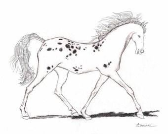 ORIGINAL HORSE DRAWING 8X10  small ink drawing, pen line art, handmade fine art, modern drawings, horses, sketch, original technique