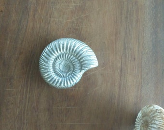 Cast Aluminum Ammonite